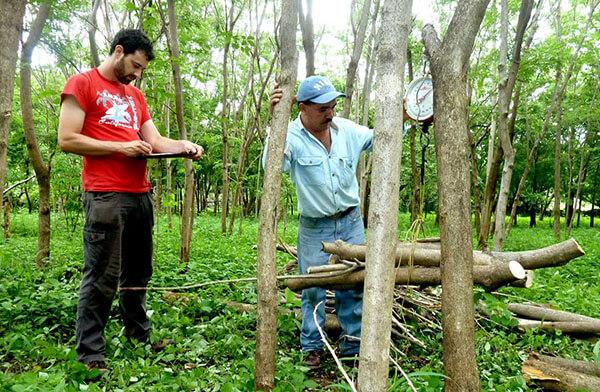 csm_klimaschutzprojekt-nicaragua-7186-2