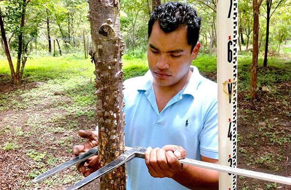 csm_klimaschutzprojekt-nicaragua-7186-3