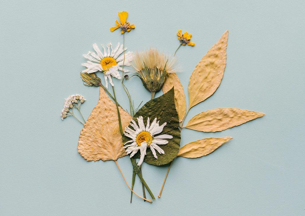 DIY Postkarte mit gepressten Blumen und Blättern